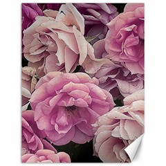 Great Garden Roses Pink Canvas 12  X 16