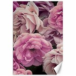Great Garden Roses Pink Canvas 20  x 30