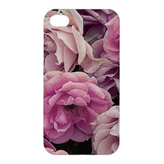 Great Garden Roses Pink Apple Iphone 4/4s Premium Hardshell Case by MoreColorsinLife