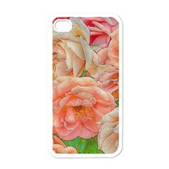 Great Garden Roses, Orange Apple Iphone 4 Case (white)