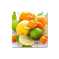 Citrus Fruits Square Magnet
