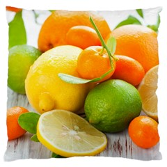 Citrus Fruits Standard Flano Cushion Cases (one Side)
