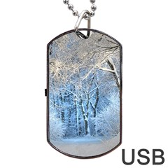 Another Winter Wonderland 1 Dog Tag USB Flash (Two Sides)  by MoreColorsinLife
