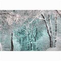 Another Winter Wonderland 2 Collage 12  X 18  by MoreColorsinLife