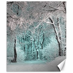 Another Winter Wonderland 2 Canvas 20  X 24   by MoreColorsinLife