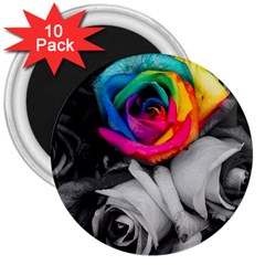 Blach,white Splash Roses 3  Magnets (10 Pack)  by MoreColorsinLife