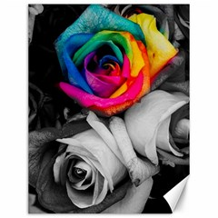 Blach,white Splash Roses Canvas 12  X 16