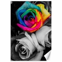 Blach,white Splash Roses Canvas 12  X 18