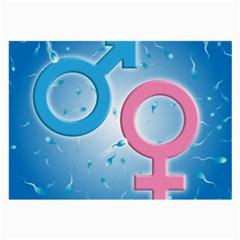 Sperm And Gender Symbols  Large Glasses Cloth (2 Side) by ScienceGeek