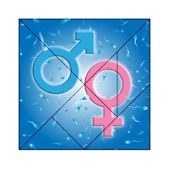 Sperm and Gender Symbols  Acrylic Tangram Puzzle (6  x 6 ) by ScienceGeek