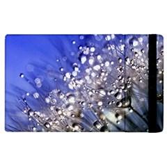 Dandelion 2015 0704 Apple Ipad 2 Flip Case by JAMFoto