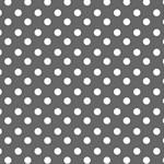 Gray Polka Dots BEST BRO 3D Greeting Card (8x4)  Inside