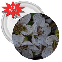 Amazing Garden Flowers 32 3  Buttons (10 Pack)  by MoreColorsinLife