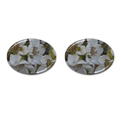 Amazing Garden Flowers 32 Cufflinks (oval) by MoreColorsinLife