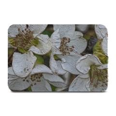 Amazing Garden Flowers 32 Plate Mats by MoreColorsinLife