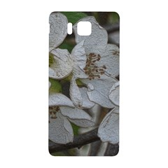 Amazing Garden Flowers 32 Samsung Galaxy Alpha Hardshell Back Case