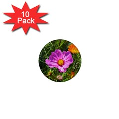 Amazing Garden Flowers 24 1  Mini Magnet (10 pack)  by MoreColorsinLife