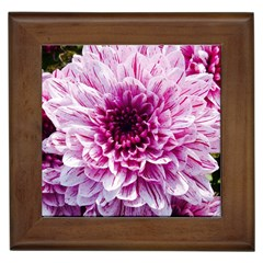 Wonderful Flowers Framed Tiles