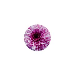 Wonderful Flowers 1  Mini Magnets