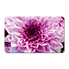 Wonderful Flowers Magnet (rectangular)