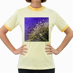 Dandelion 2015 0705 Women s Fitted Ringer T Shirts by JAMFoto