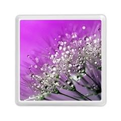 Dandelion 2015 0707 Memory Card Reader (square)  by JAMFoto