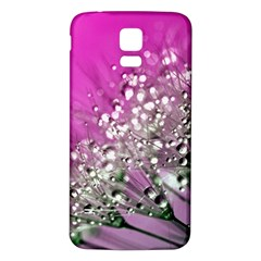 Dandelion 2015 0708 Samsung Galaxy S5 Back Case (white)
