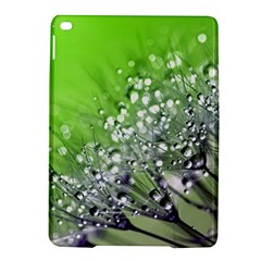 Dandelion 2015 0715 Ipad Air 2 Hardshell Cases by JAMFoto