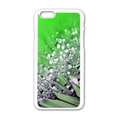 Dandelion 2015 0716 Apple Iphone 6 White Enamel Case by JAMFoto