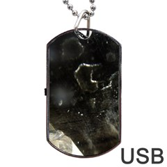 Space Like No 6 Dog Tag Usb Flash (one Side) by timelessartoncanvas