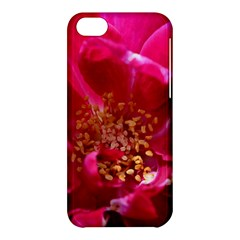Red Rose Apple Iphone 5c Hardshell Case by timelessartoncanvas
