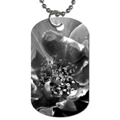 Black And White Rose Dog Tag (two Sides) by timelessartoncanvas