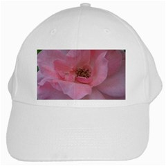 Pink Rose White Cap