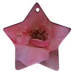 Pink Rose Ornament (Star)