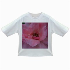 Pink Rose Infant/Toddler T-Shirts