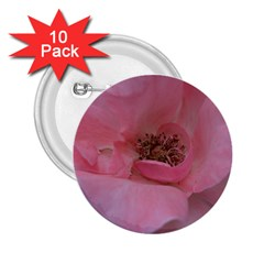 Pink Rose 2.25  Buttons (10 pack)