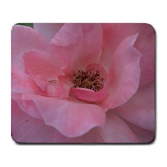 Pink Rose Large Mousepads