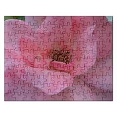 Pink Rose Rectangular Jigsaw Puzzl
