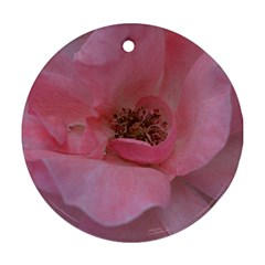Pink Rose Round Ornament (Two Sides)