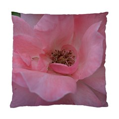 Pink Rose Standard Cushion Case (One Side)