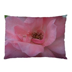 Pink Rose Pillow Cases