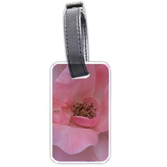 Pink Rose Luggage Tags (One Side)