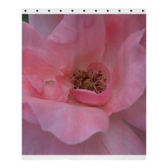 Pink Rose Shower Curtain 60  x 72  (Medium)