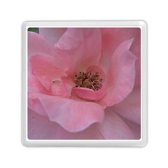 Pink Rose Memory Card Reader (Square)
