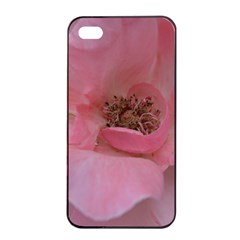 Pink Rose Apple iPhone 4/4s Seamless Case (Black)