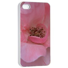 Pink Rose Apple iPhone 4/4s Seamless Case (White)