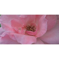 Pink Rose You Are Invited 3d Greeting Card (8x4)