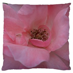 Pink Rose Large Cushion Cases (One Side)