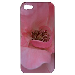 Pink Rose Apple iPhone 5 Hardshell Case
