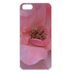 Pink Rose Apple iPhone 5 Seamless Case (White)